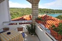 apartments gozinka , island Rab